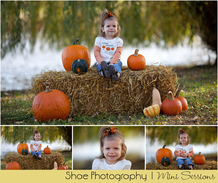 pictures of fall mini session ideas - Google Search