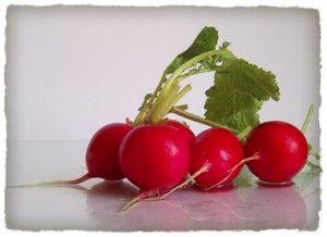 Gemüse auf dem Balkon – Fünf Pflanzen für den Einstieg