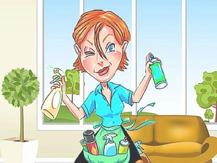 Immagine di anteprima per: Pulizia della Casa in 7 passi (prodotti e consigli)