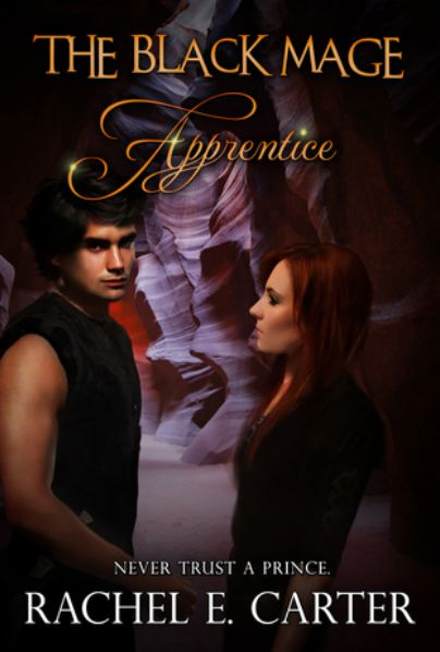 Don't Judge, Read: Review Update: Apprentice (The Black Mage, #2)