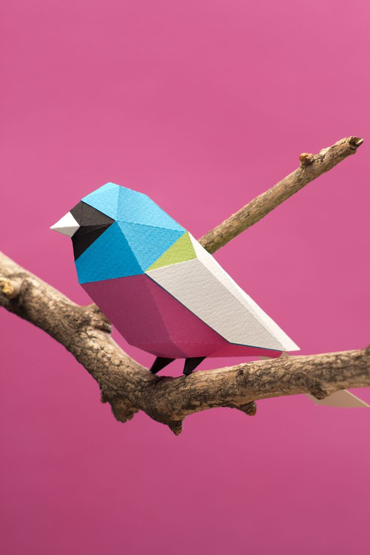 Aves de papel/ Paper birds on Behance