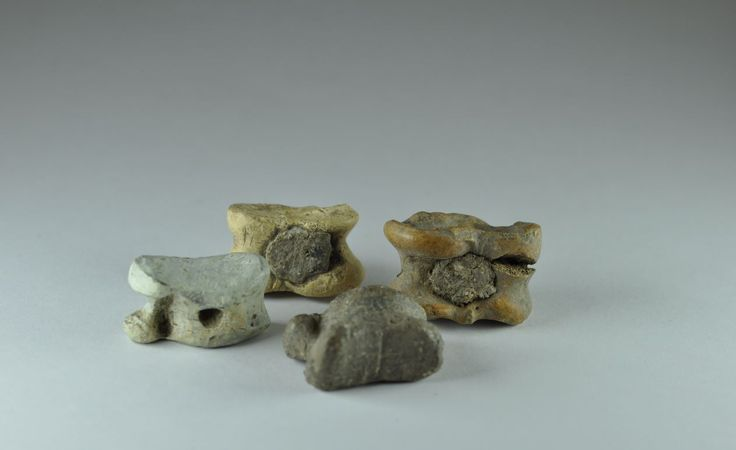 Roman astragalus, 1st-4th century A.D. Bone  filled with lead and lead astragalus. Private collection