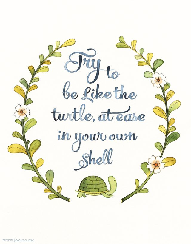 Try to be like the turtle, at ease in your own shell