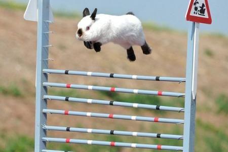 et hop !