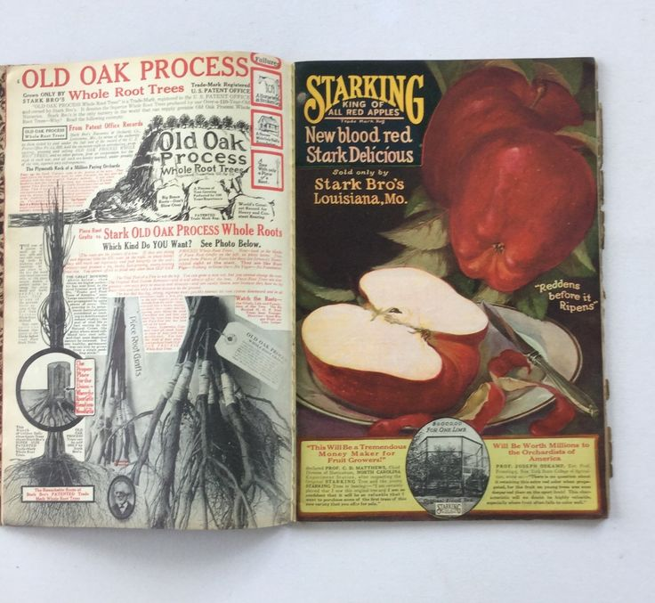 Vintage Stark Brothers Seed Fruit Tree and Shrub Catalog 1927 by GardenBarn on Etsy