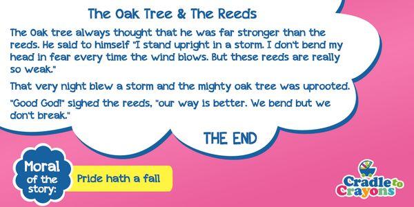 #StoryOfTheDay The Oak Tree & The Reeds.  #Gurgaon #kids #children #child #parents #toddler #kindergarten http://cradletocrayons.edu.in/