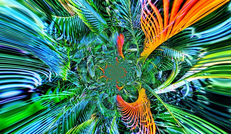 TROPICAL BEAUTY II BY TATIANA LOPATINA.  VISIT OUR WEBSITE FOR MORE GREAT IMAGES www.lailas.com