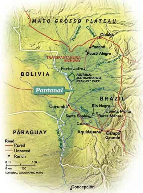 Brazil's Wild Wet Map Pantanal _ Mato Grosso