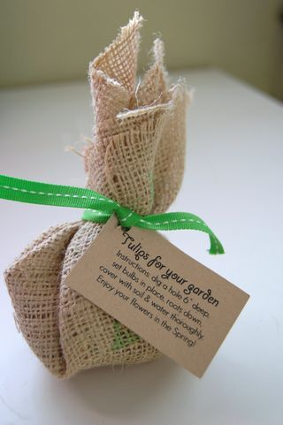 Wedding favors! Tulip and Daffodil in burlap bags