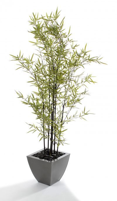 Artificial Bamboo Stalks ~ Images about bamboo plants trees by artplants on