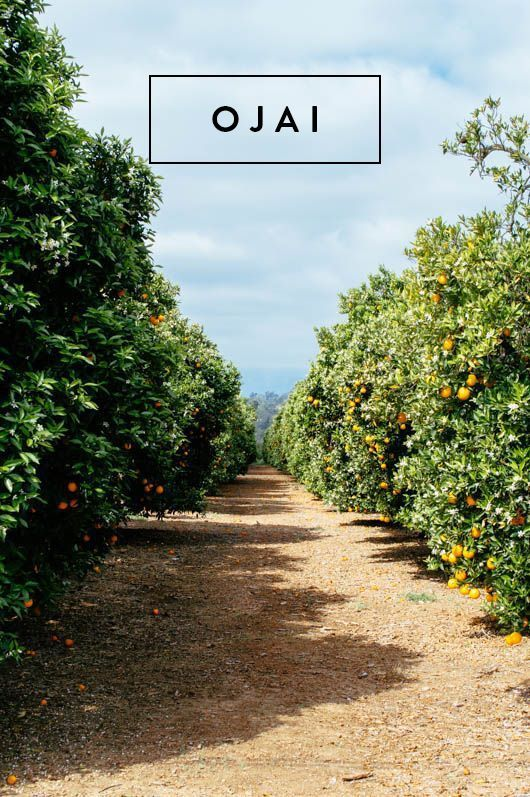 day tripping: a visit to ojai. | sfgirlbybay | Bloglovin'