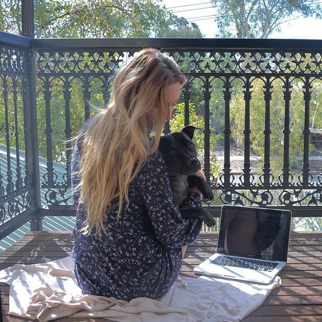 Trying to get a blog post started with this one around is impossible!    #staffy#northernterritory#alicesprings#australia#dog#travelgirls#wearetravelgirls#wanderingwolfchild#outdoorwomen#femmetravel#free#love#freedom