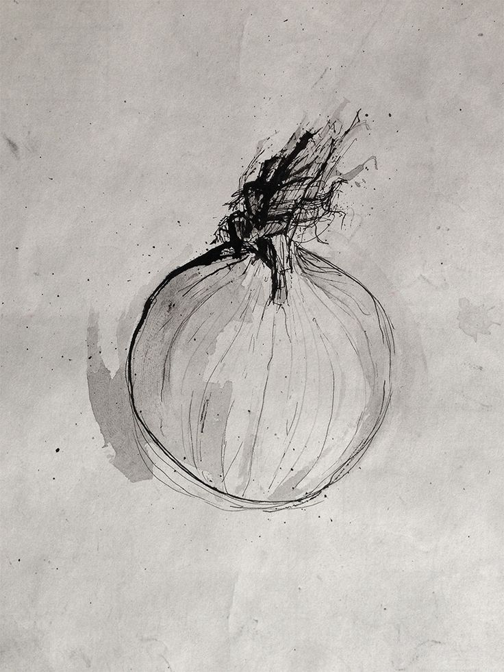 Pen and Ink - Onion