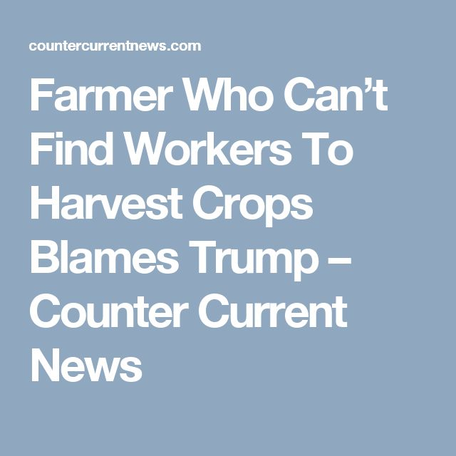Farmer Who Can't Find Workers To Harvest Crops Blames Trump – Counter Current News