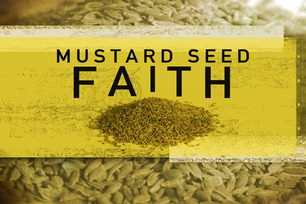"""#myoneword """"I tell you the truth, if you have faith as small as a mustard seed, you can say to this mountain, 'Move from here to there' and it will move.  Nothing will be impossible for you."""" Matthew 17:20"""