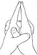 Expulsa todas las energias negativas del cuerpo y nente. Practicarlo solo durante diez respiraciones profundas. Despues deshacer el mudra y con las manos abiertas hacer tres o diez respiraciones mas. Es muy poderoso.