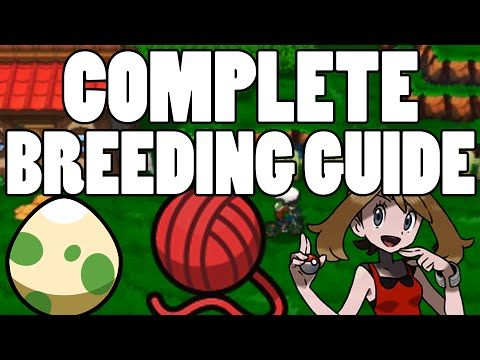 Pokemon Omega Ruby Alpha Sapphire: Breeding Perfect Pokemon Guide (Natures and IVs) - YouTube