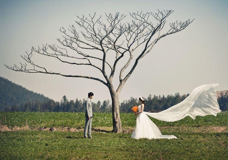Korea Pre-Wedding - Jeju Island, Part 2 by May Studio on OneThreeOneFour 19