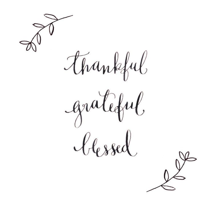 Happy thanksgiving! So many things to be thankful for but