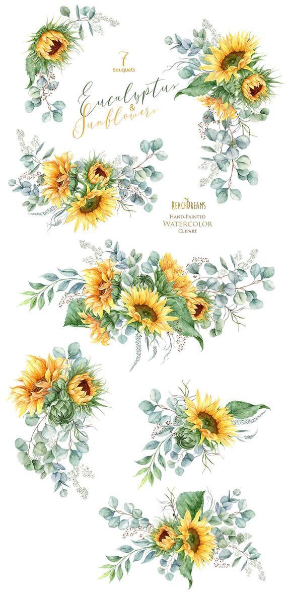 Sunflower Clipart Eucalyptus Clipart Greenery Clipart