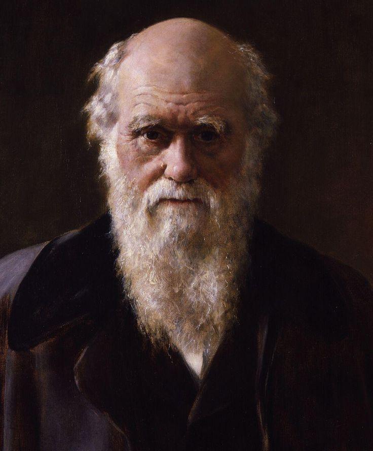 Charles_Robert_Darwin_by_John_Collier_cropped.jpg (1080×1304)