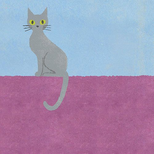 Chie Katayama illustration.Cat.#illustration #draw #art #cat #イラスト #イラストレーション #猫