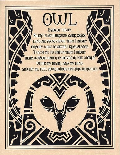 Owl Prayer Animal Spirit Wicca Native American Celtic Parchment Poster Art | eBay