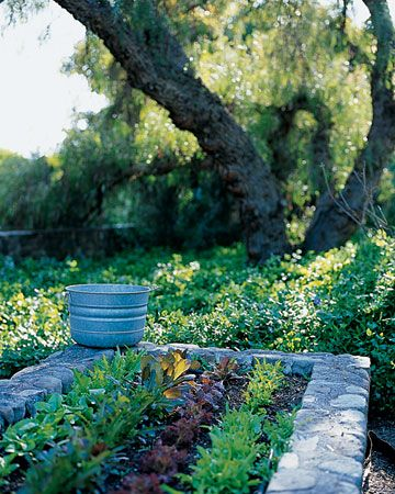 Stone raised beds: Rai Beds Gardens, Gardens Boxes, Raised Beds, Stones Wall, California Home, Vegetables Gardens, Herbs Gardens, Rai Gardens Beds, Small Gardens