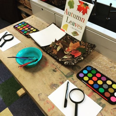 Inquiring Minds: Mrs. Myers' Kindergarten: Investigating the Colors of Leaves