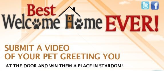 Adopt-a-Pet launches 'Best Welcome Home Ever' YouTube campaign: Adoptapet Launch, Adoption A Pet Launch