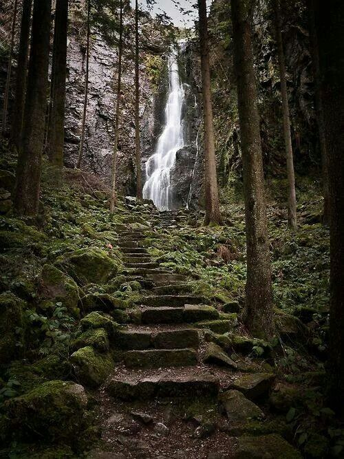 20 Best Images About The Black Forest Germany On Pinterest Forests Places And The Black