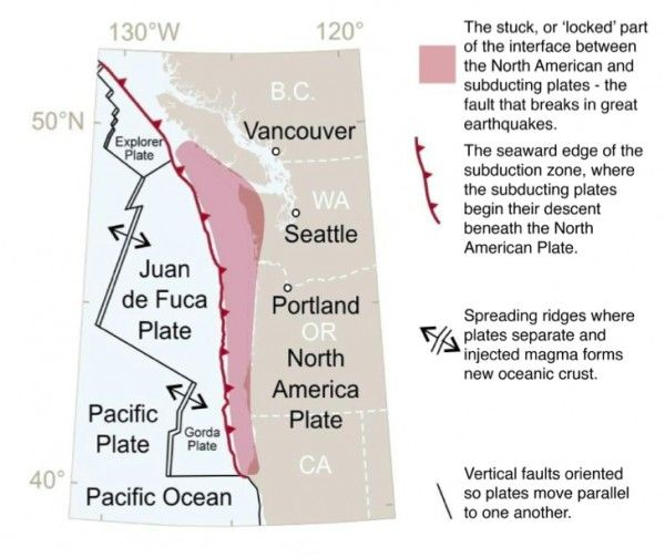 "THE CASCADIA SUBDUCTION ZONE: The geography of northern California, Oregon, Washington, and southern British Columbia is shaped by the Cascadia subduction zone, where the North American Plate collides with a number of smaller plates. The smaller plates ""subduct"" (descend) beneath the North American Plate as they converge along a 700-mile long (1,130 km) boundary. Above: Schematic view of the source area for the largest Cascadia earthquakes."