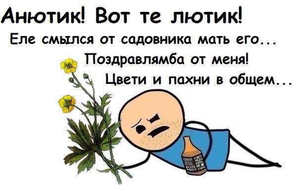 http://vk.com/photo1591484_396838352