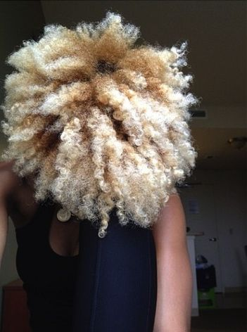 Natural Hair | Black Blonde | Curly Afro | Big Hair
