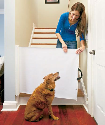 Retractable Pet Gate | LTD Commodities $23.95 - I need at least 3 of these.