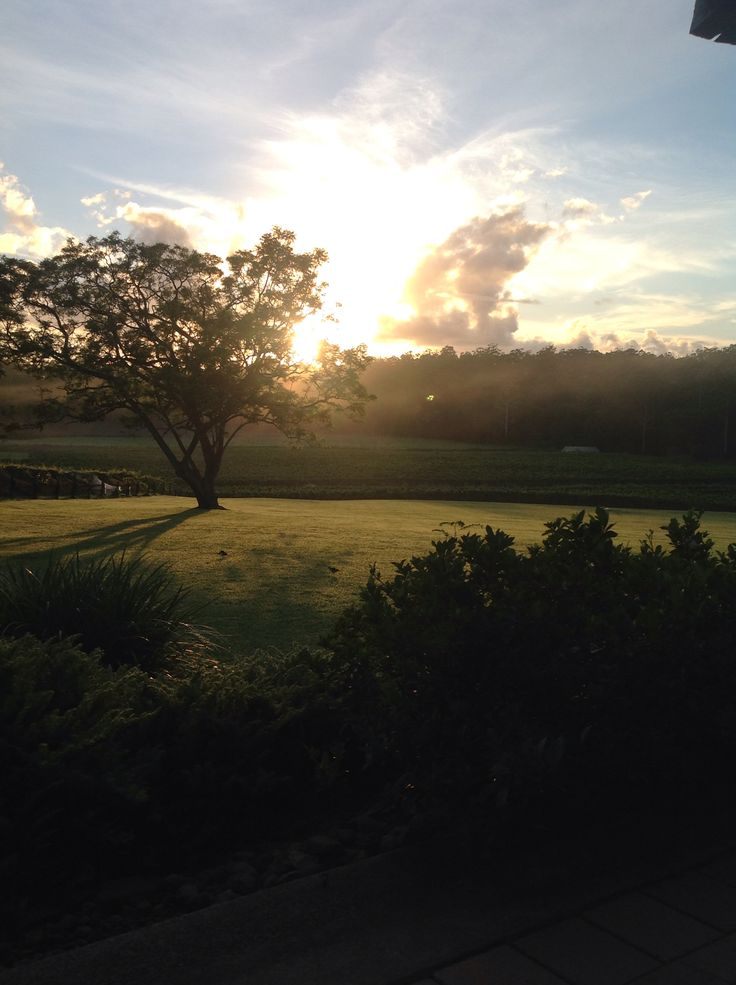 Sunrise at Bago overlooking the vineyards 7/1/2015