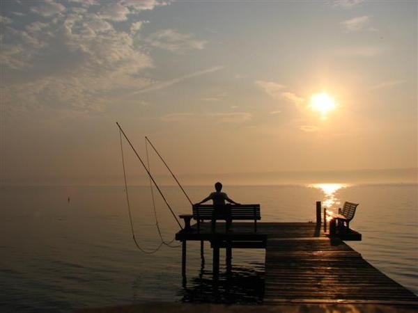 Finger Lakes, NY | Small Town USA | Pinterest | Lakes, Vacation travel and Vacation destinations
