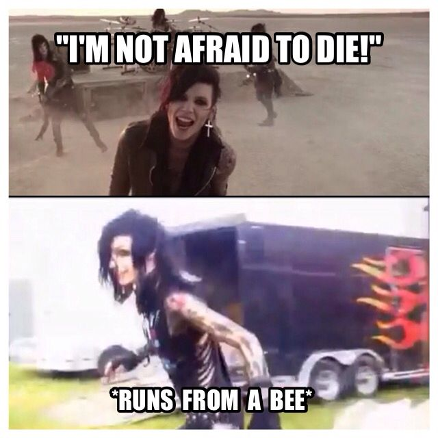 ya know, with all the bvb things I've been posting, I should really make a board