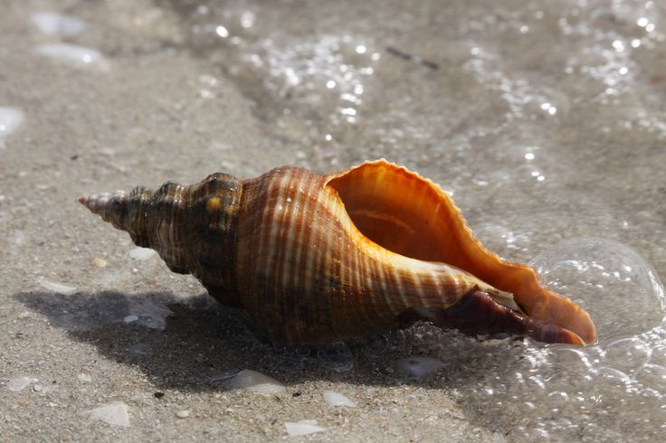 Zenfolio | Stuart Daddow Photography | Beach, Sea, Lake or Water
