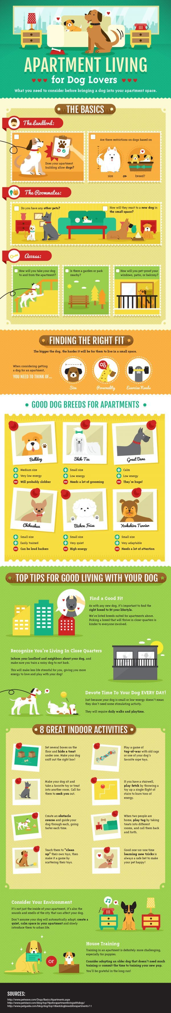Apartment Living for Dog Lovers ~ a helpful chart!