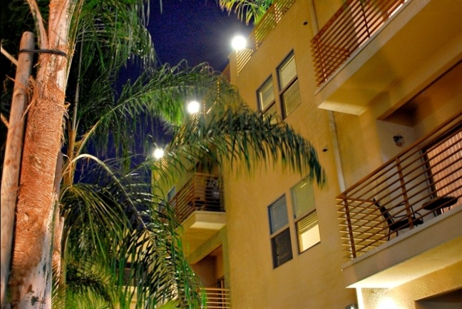 Artistic Energy Relaxing Vibe Hollywood Apartment Noho Arts District Noho