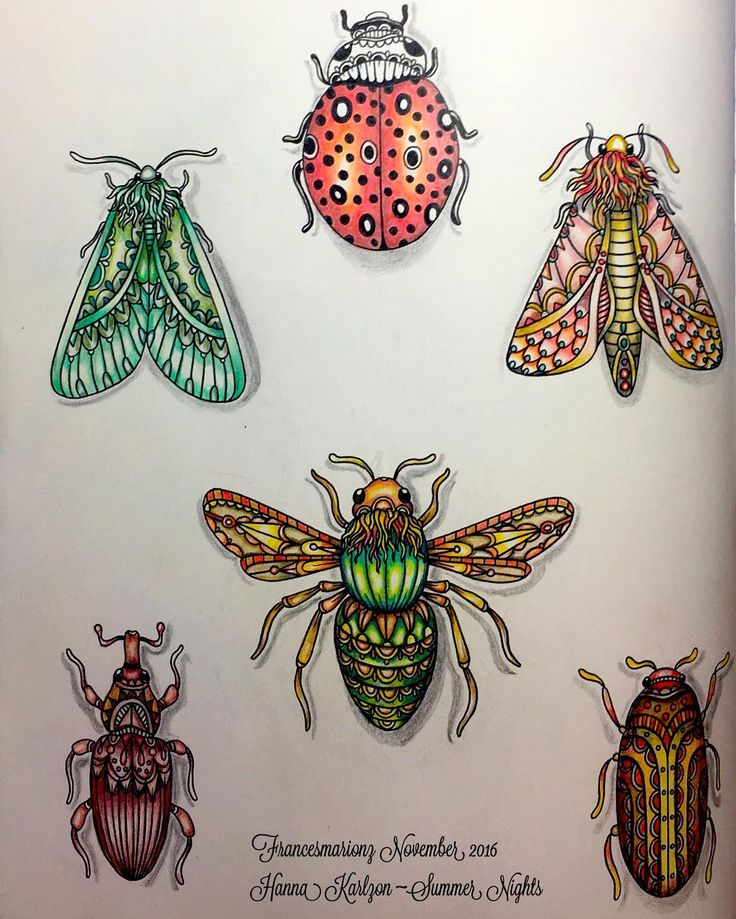 Buggies Hanna Karlzon ~Summer Nights Colored with Faber-Castell Polychromos Colored Pencils and Prisma Colors. It's the only way I like Bugs 😜 #hannakarlzon #prismacoloredpencils #fabercastellpolychromos #fabercastell #beautifulcoloring #coloringbook #colouring #colourbookforadults #colouringbook #diviasdasartes #adultcoloringbook #adultcolouring