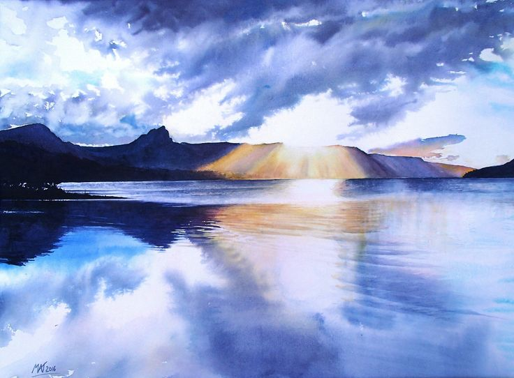 Narcissus dawn, Lake St Clair. Tasmania. Watercolour. Melhillswildart.