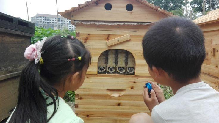 bee-hives (@yiyoyiyowei)   Twitter