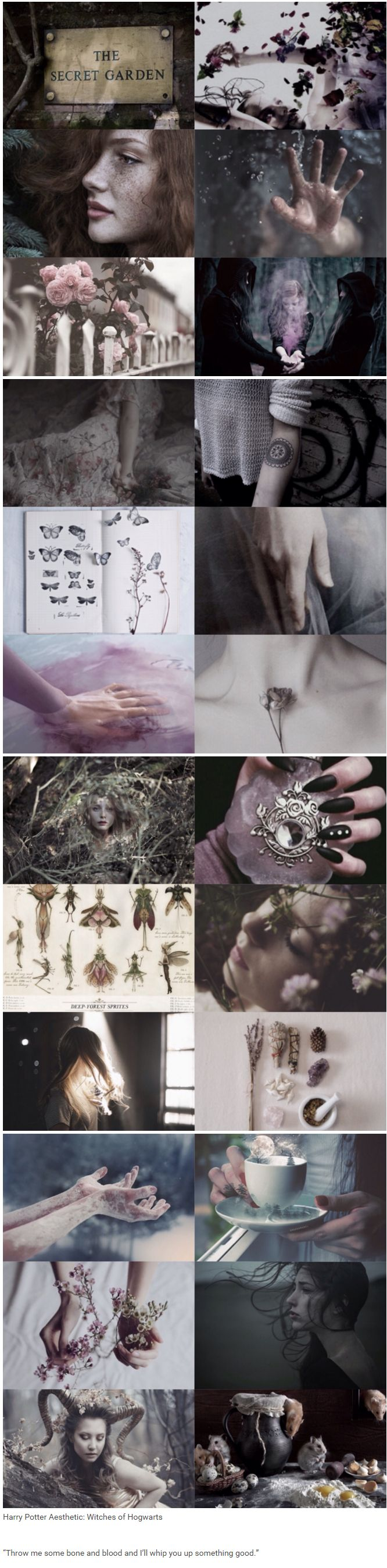 "foundinghouses:  Harry Potter Aesthetic: Witches of Hogwarts | ""Throw me some bone and blood and I'll whip you up something good."""