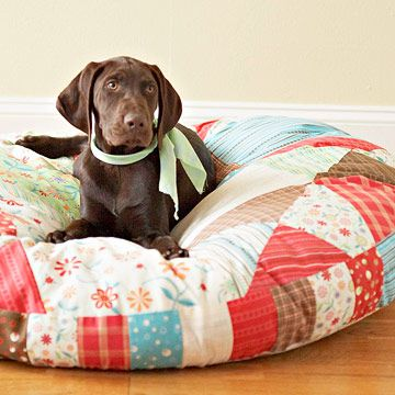 Quilt a Cozy Bed for Your Pet Quilts aren't just for people anymore! Check out this step-by-step guide to make a comfy bed for your pet.