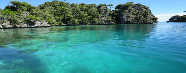 Guerilla Dive Raja Ampat | Diving Raja Ampat | Dive Trip Raja Ampat | Fishing Misool Raja Ampat