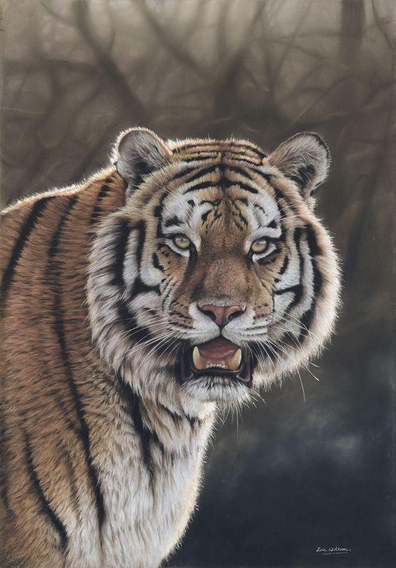 Amur Tiger at Twilight' Pastel painting. Original available.