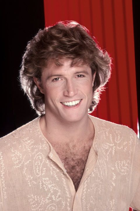 Andy Gibb (Platinum) Shadow Dancing (The Gold) I Just Want To Be Your Everything/ (Love Is) Thicker Than Water/ An Everlasting Love/ (Our Love) Don't Throw It All Away