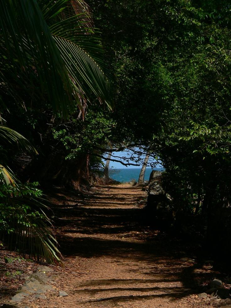 Reves aventures: Guyane : un salut pour la famille